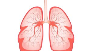 Lung diseases: important facts that need to be known